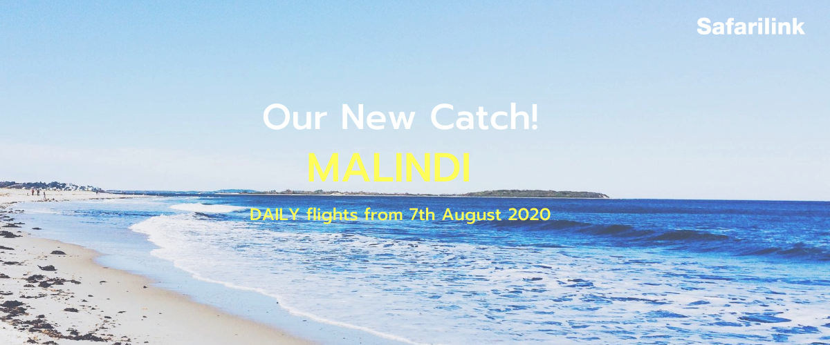 Safarilink now takes you to Kenya's top beach destinations after announcing Malindi flights